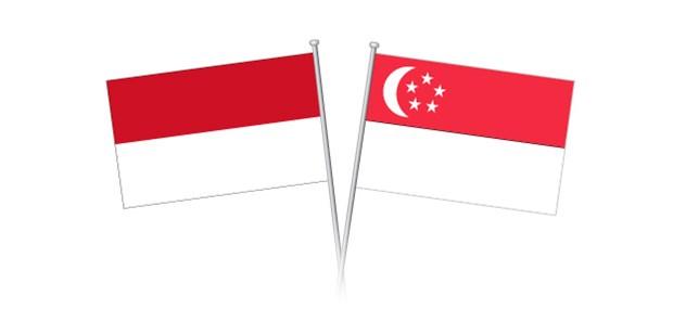 Singapour et l'Indonesie renforcent leur cooperation economique et au commerce hinh anh 1