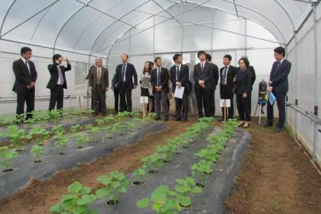 Agriculture : le Japon sonde des opportunites d'investissement a Ha Nam hinh anh 1