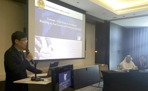 Presentation du Vietnam aux Emirats arabes unis hinh anh 1