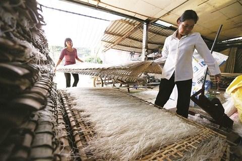Les vermicelles de tolomane de Minh Hong hinh anh 1