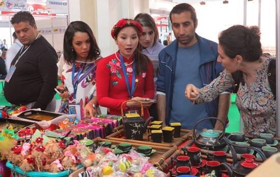Le Vietnam assiste a la 50eme Foire internationale d'Alger hinh anh 1