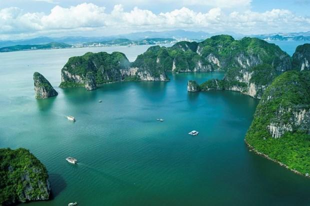 Quatre films vietnamiens seront projetes au Festival de Cannes 2017 hinh anh 2