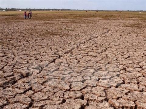 L'agriculture vietnamienne et les changements climatiques hinh anh 1