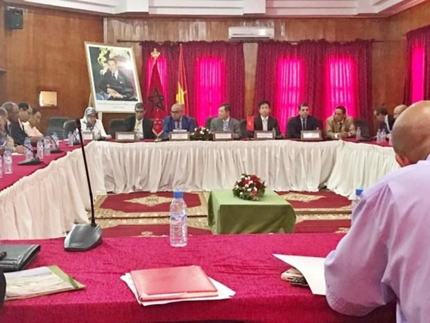 Vietnam-Maroc : vers une cooperation renforcee dans le commerce et l'investissement hinh anh 1