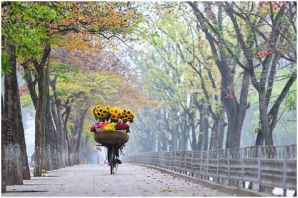 Hanoi toujours une des villes preferees des touristes hinh anh 1