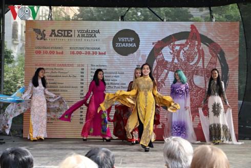 Promotion de l'image du Vietnam au Festival culturel de l'Asie hinh anh 1