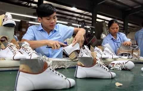 Les Etats-Unis restent le premier importateur de chaussures et sandales du Vietnam hinh anh 1