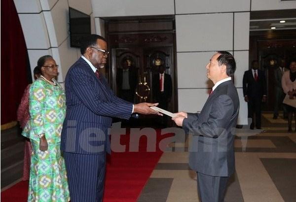 Dynamiser la cooperation entre la Namibie et le Vietnam hinh anh 1