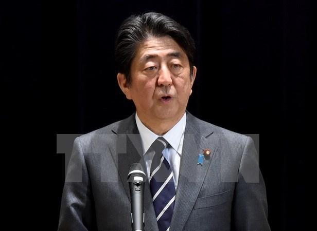 Le Japon s'engage a cooperer avec l'ASEAN pour maintenir l'ordre international hinh anh 1