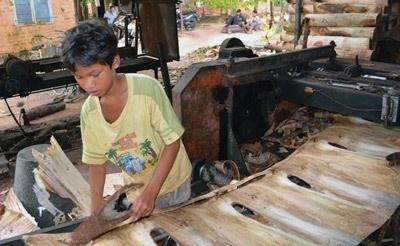 Protegeons les petits du travail des enfants hinh anh 1