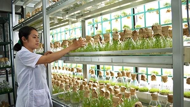 L'Australie et la region du delta du Mekong cooperent dans l'agriculture hinh anh 1