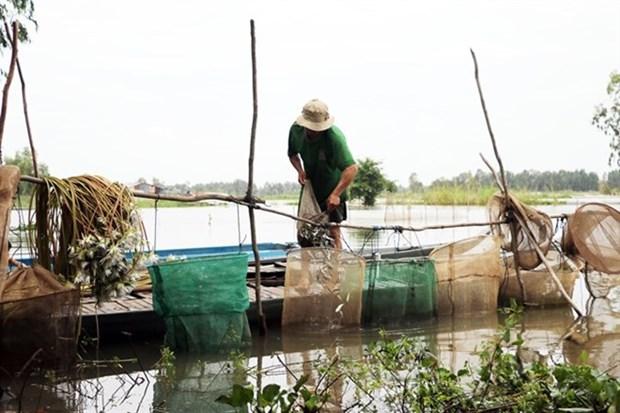 Delta du Mekong: les inondations devraient arriver plus tot cette annee hinh anh 1
