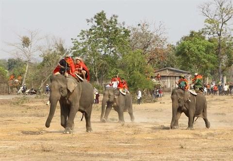 L'elephant dans la tradition vietnamienne hinh anh 1
