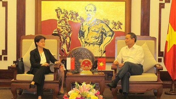 Vietnam - Singapour: cooperation renforcee dans les transports et communications hinh anh 1