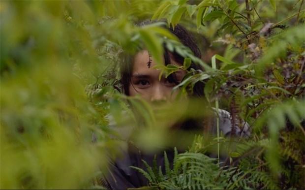 «Ciel rouge», un film francais tourne dans les montagnes vietnamiennes sortira bientot au cinema hinh anh 1