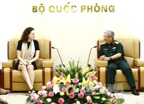 Le Vietnam renforce sa participation a des operations de maintien de la paix de l'ONU hinh anh 1