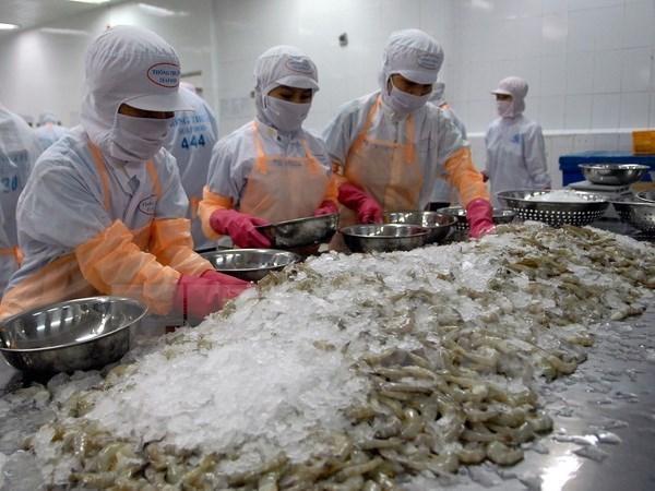 L'exportation de crevettes connait une croissance de pres de 16% au premier semestre hinh anh 1