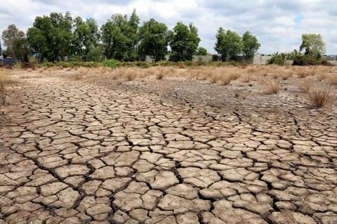 Le delta du Mekong doit relever les defis des changements climatiques hinh anh 1