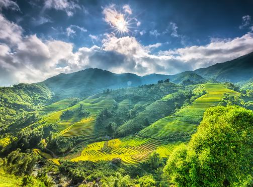 Le journal americain Thrillist suggere 12 experiences pour explorer le Vietnam hinh anh 1