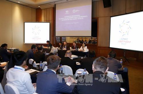 L'APEC encourage l'utilisation des vehicules consommant des energies nouvelles hinh anh 1