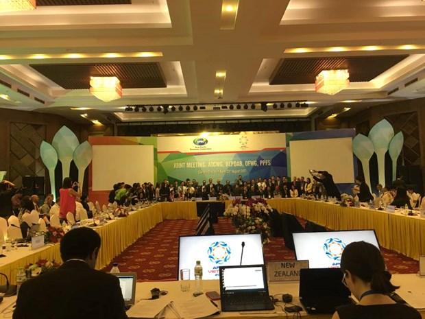 Les economies membres de l'APEC renforcent leur coordination pour assurer la securite alimentaire hinh anh 1