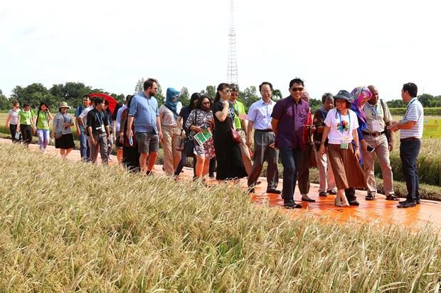 Les delegues apprecient la Semaine de la securite alimentaire de l'APEC organisee par le Vietnam hinh anh 1