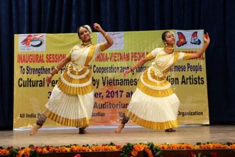 Ouverture de la 9e edition du festival d'amitie populaire Vietnam-Inde hinh anh 1