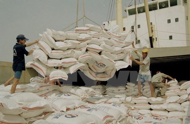 Forte hausse des exportations nationales de riz en 8 mois hinh anh 1