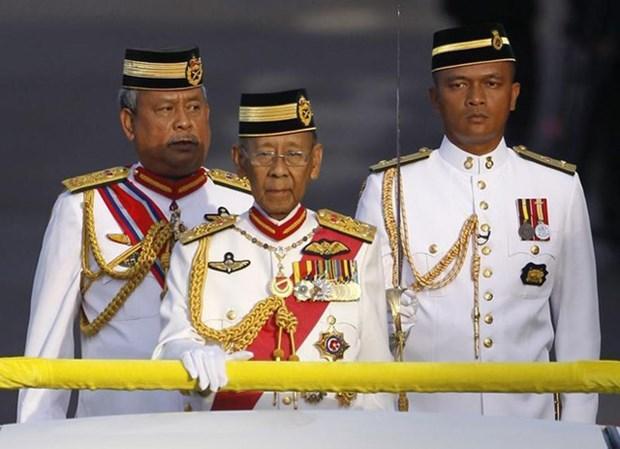Message de condoleances du Vietnam suite au deces de l'ancien roi de Malaisie hinh anh 1