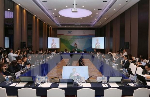 Cloture de la Semaine des reunions ministerielles de l'APEC sur les PME hinh anh 1