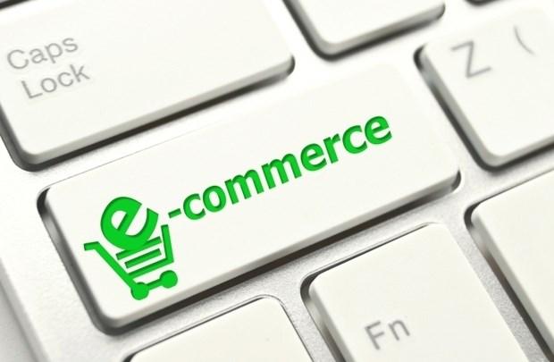 Bientot le Sommet pour l'e-commerce 2017 hinh anh 1