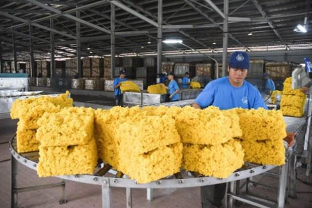 Bond des exportations nationales de caoutchouc depuis janvier hinh anh 1
