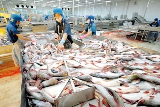 La Foire des produits aquatiques vietnamiens attendue en octobre hinh anh 1