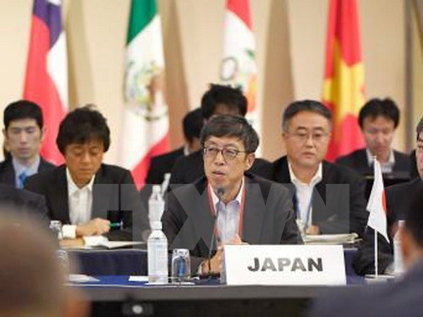 TPP: les negociations progressent vers un nouvel accord hinh anh 1