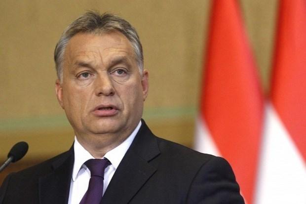 La visite du PM hongrois au Vietnam contribue a approfondir les liens bilateraux hinh anh 1