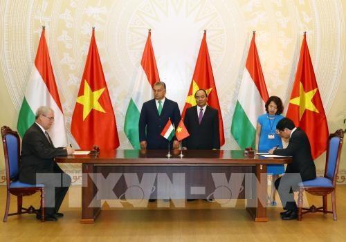 Le Vietnam et la Hongrie renforcent la cooperation dans l'agriculture hinh anh 1