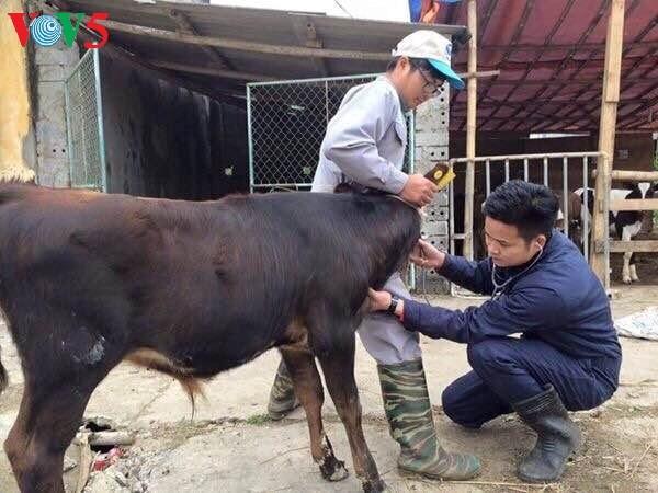 Nguyen Van Minh, un prof passionne hinh anh 1
