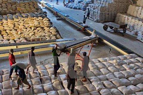 Can Tho : bons signes pour l'export du riz a l'etranger hinh anh 1