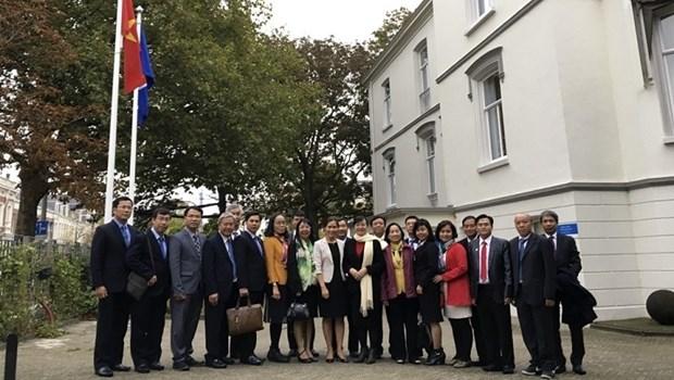 Une delegation de HCM-Ville en visite de travail aux Pays-Bas hinh anh 1