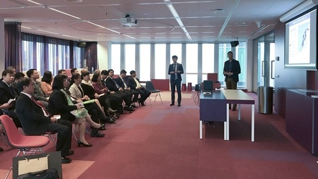 Une delegation de HCM-Ville en visite de travail aux Pays-Bas hinh anh 2