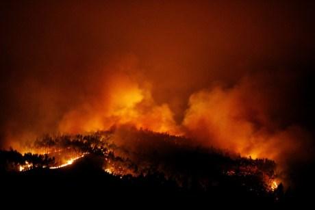 Feux de foret : Message de condoleances au Portugal hinh anh 1