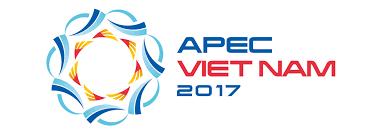 APEC : force motrice pour soutenir le processus de reforme au Vietnam hinh anh 1