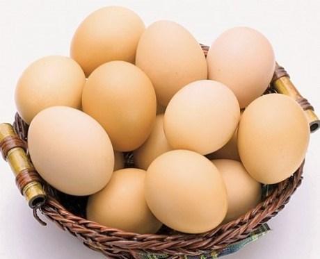 Sommet sur la production et la consommation d'œufs au Vietnam hinh anh 1