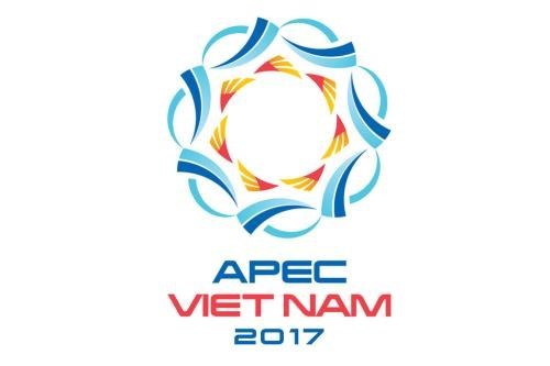 Installation de statues des economies membres de l'APEC a Da Nang hinh anh 1