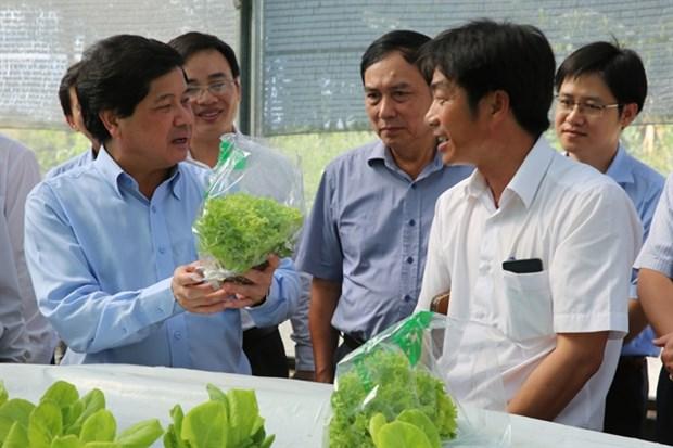 De nombreux obstacles pour le developpement d'une agriculture high-tech hinh anh 4