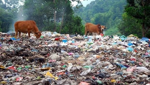 Le Vietnam lance une ligne telephonique pour signaler les pollutions hinh anh 1