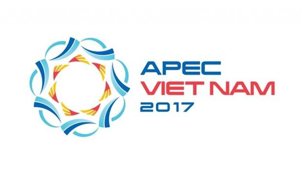 APEC 2017 : bientot le Forum la Voix future de l'APEC a Da Nang hinh anh 1