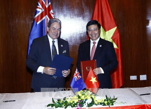 Le Vietnam promeut la cooperation avec la Nouvelle-Zelande et la Papouasie-Nouvelle-Guinee hinh anh 1