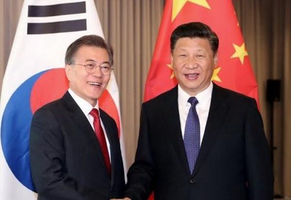 APEC 2017: Xi Jinping rencontre les dirigeants des Philippines, du Japon et de la R. de Coree hinh anh 2