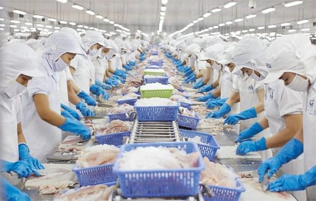 Pres de 6,84 milliards d'exportation de produits aquatiques en 10 mois hinh anh 1